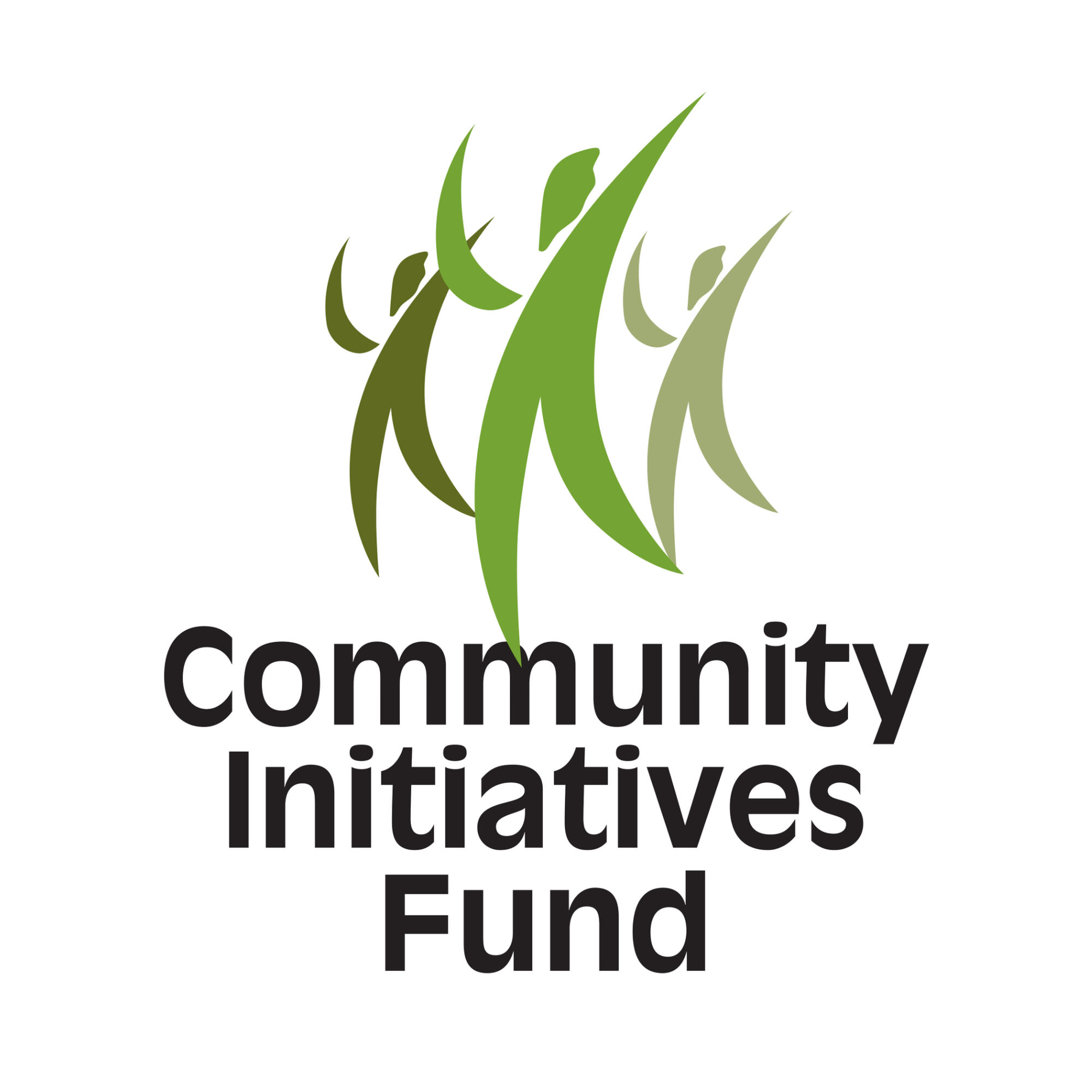 Community Initiatives Fund